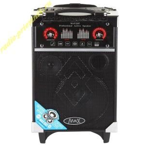 Переносная акустическая система MAX Q67